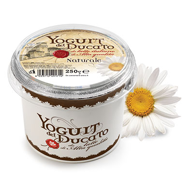 YOGURT DUC naturale